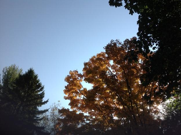 fall-sunrise1.jpg