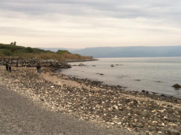 Shoreline of Capernaum