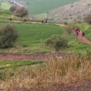 2015-01-10 11.04.52pilgrims in Galilee