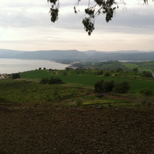 2015-01-10 hillside of the beatitudes copy
