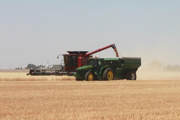 Wheat-harvest-Kansas